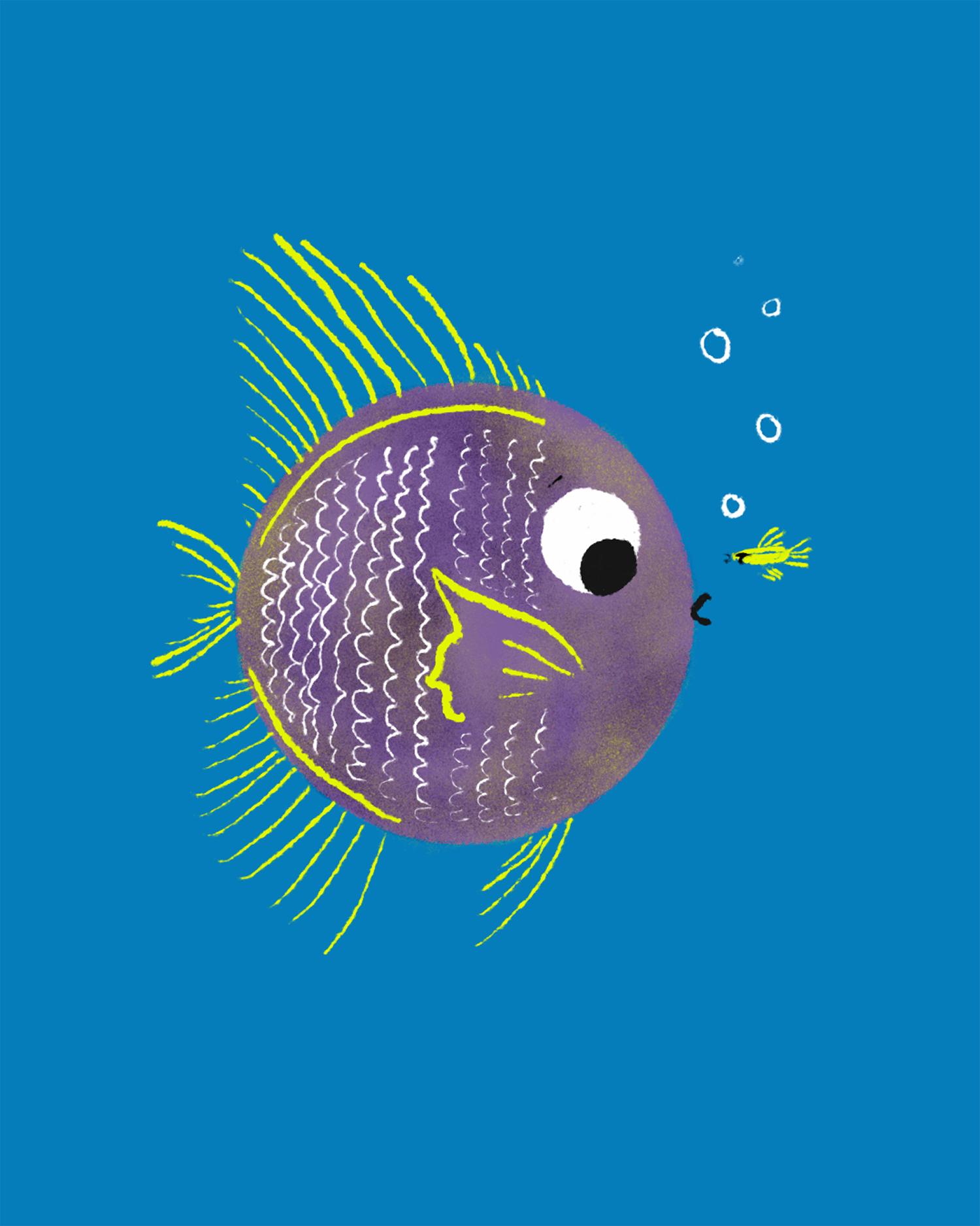 bonaddio_fishfriends_web_1500px_rgb.jpg