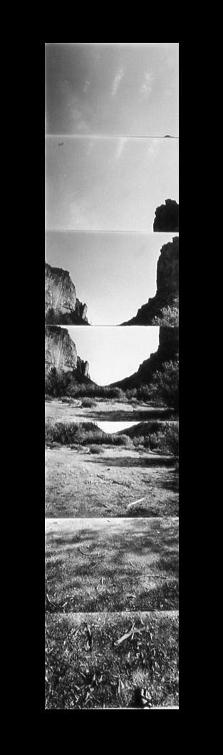The Vertical Landscape -