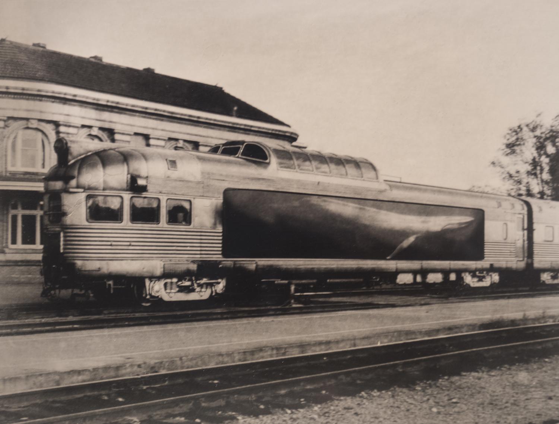 Juvenile Whale in Custom Railcar