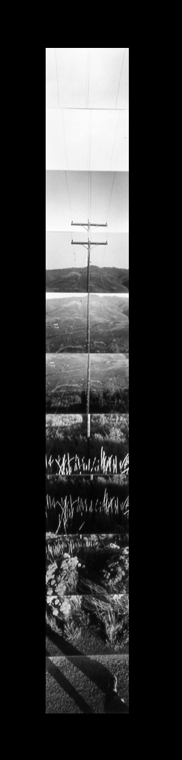The Vertical Landscape