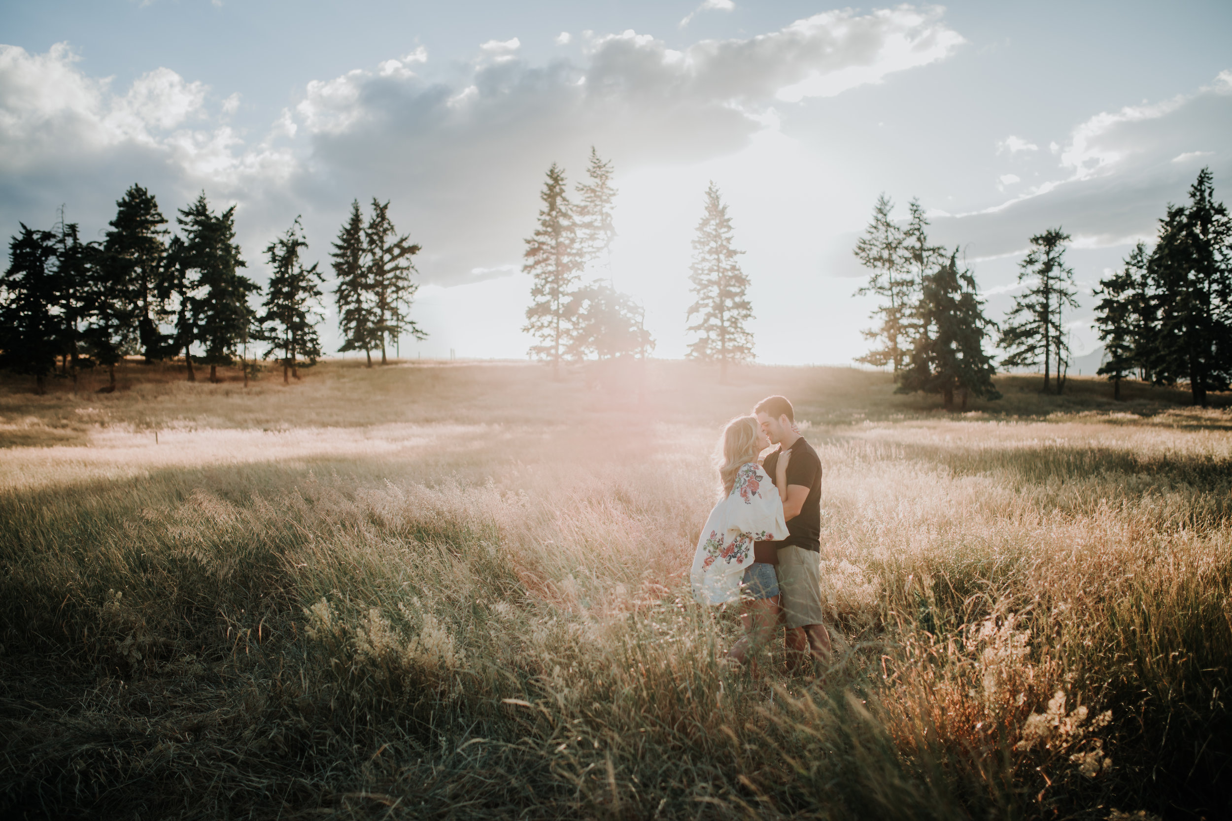 $350// One hour photo shoot// One or two locations//100+ edited images delivered in an online gallery//Half price discount offered if you have your wedding booked with Honey Deer Photography -