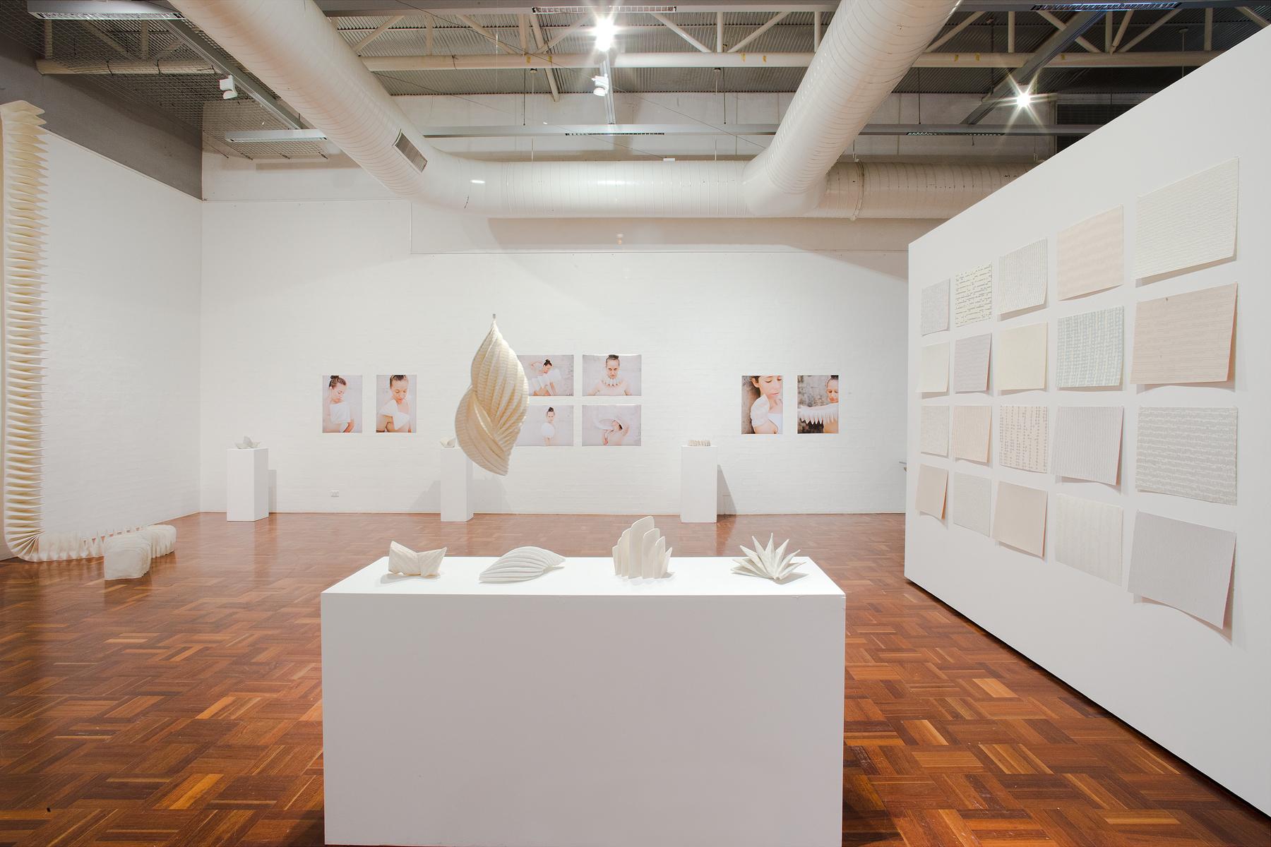Jemima Parker, Installation of Honours work, 2012 Photo: Stuart Hay, ANU Photography