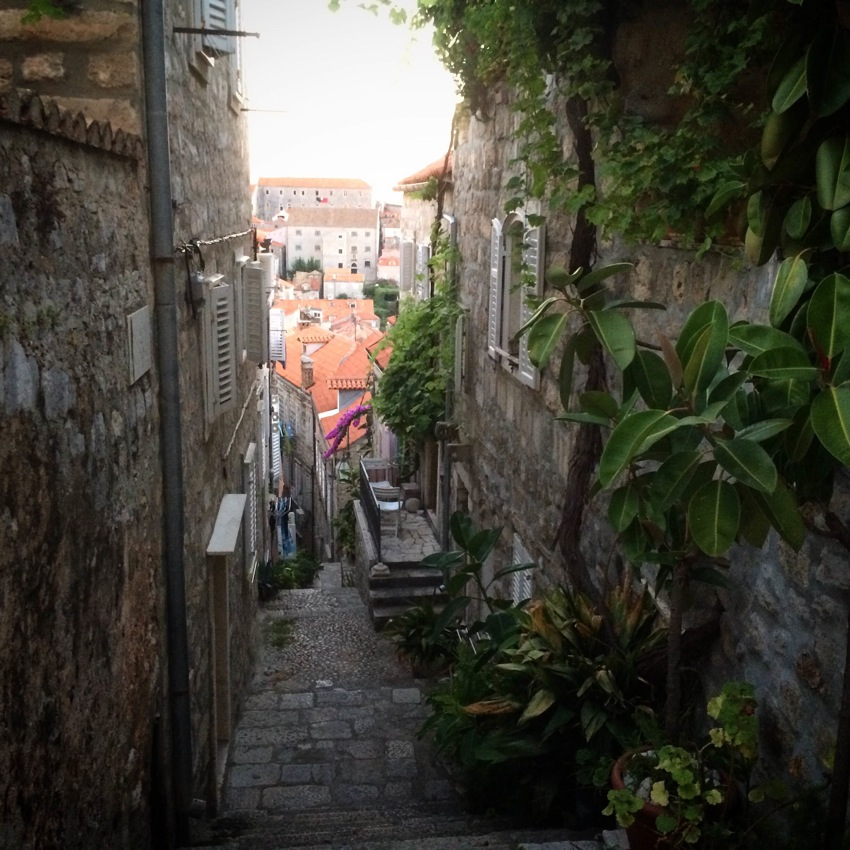 Dubrovnik has oodles of winding alleyways, great restaurants, hidden nooks, marvelous views and a surprisingly modern mediterranean vibe — and more stray cats then you would believe!