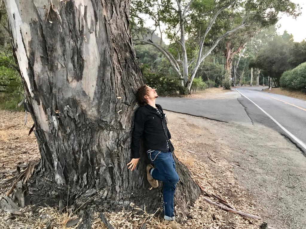 Satya Colombo eucalyptus