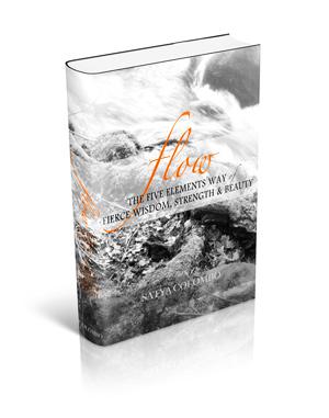 flow-book-psd-sm.jpg