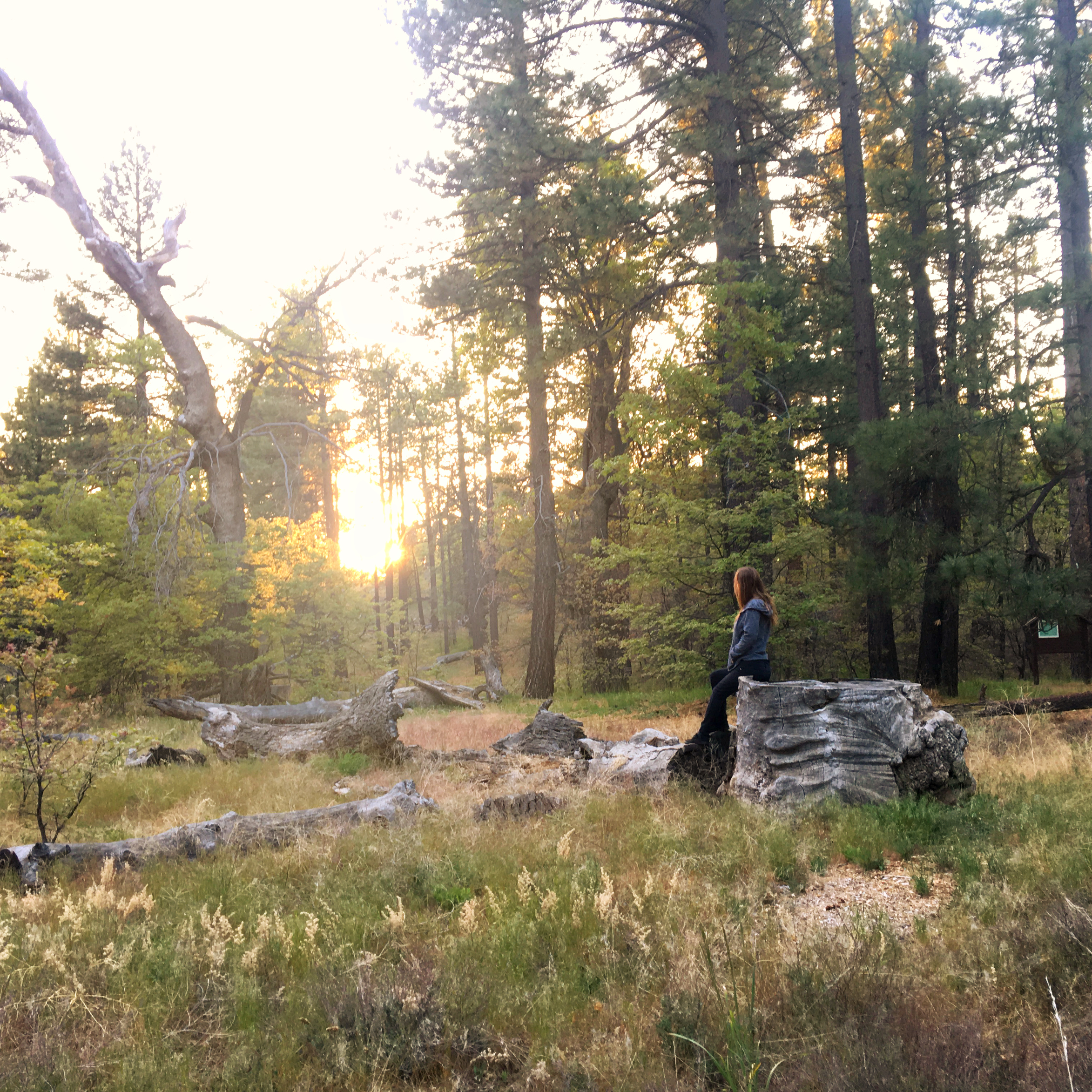 sunset, camping, hiking, glamping, outdoors, wilderness, nature, travel,
