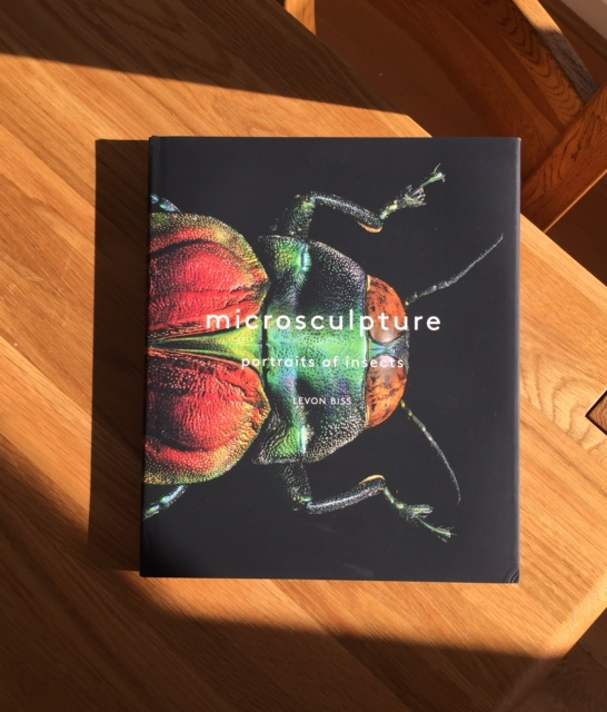 microsculpture book.jpg