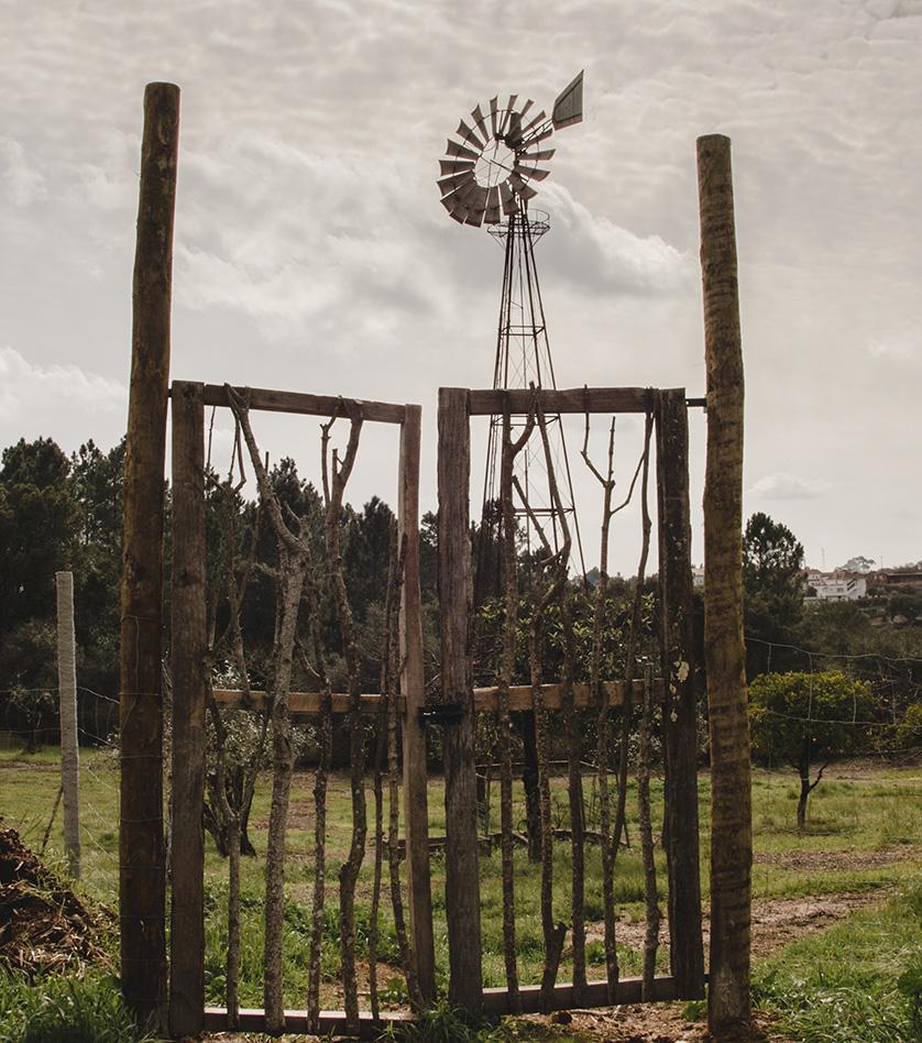 windmill_72.jpg