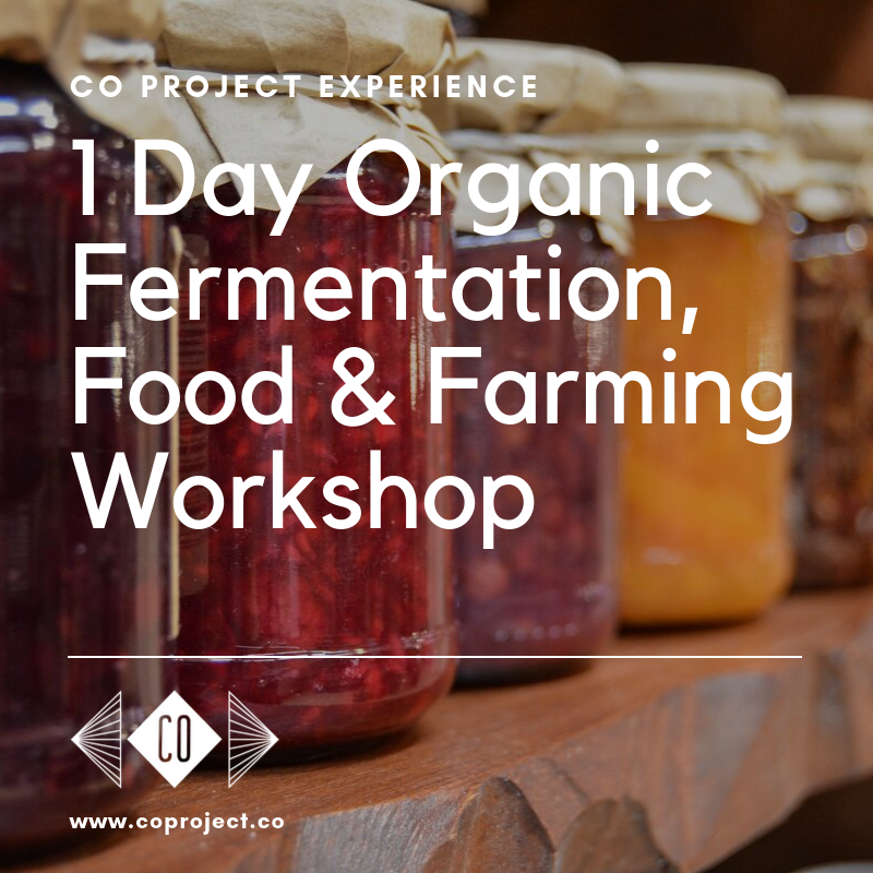 CO PROJECT fermentation workshop