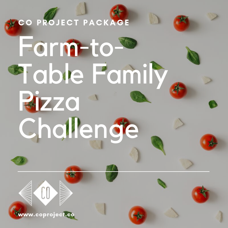 CO Project farm Portugal fun family activities