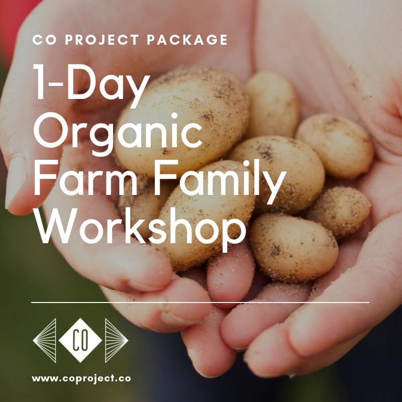 Co project farm Portugal family organic farming workshops