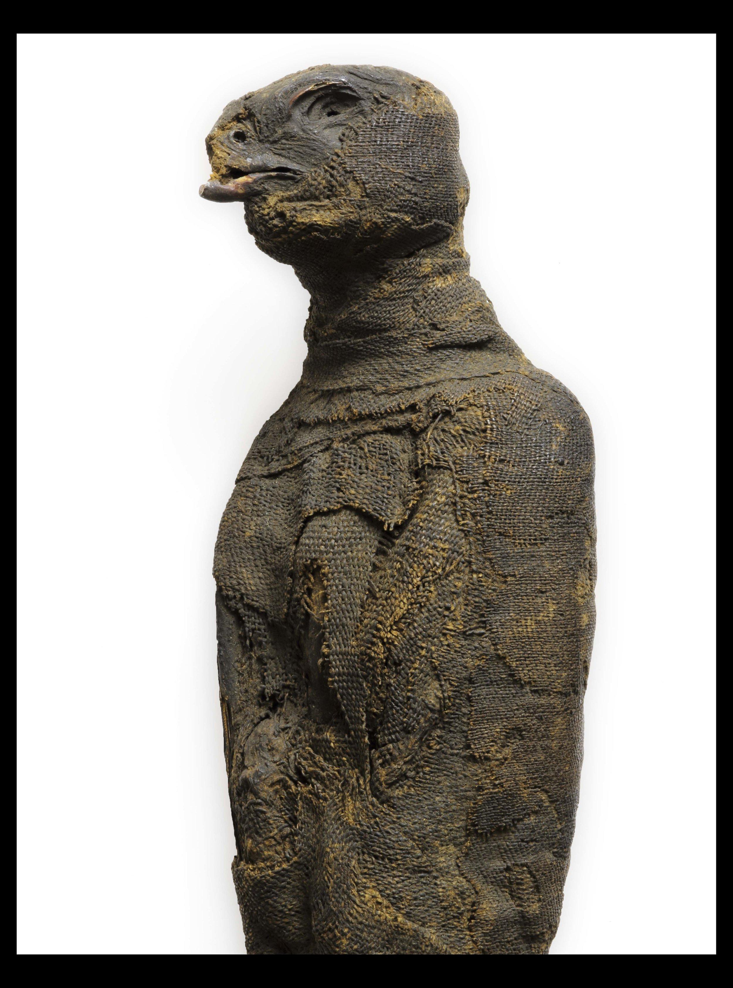 Unidentified Hawk Mummy.JPG