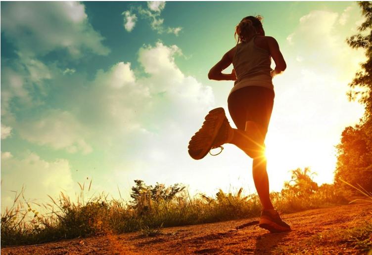 Health & Life Science - Spey CardioSquat EasySoccer PDPThe Sport Dietitian