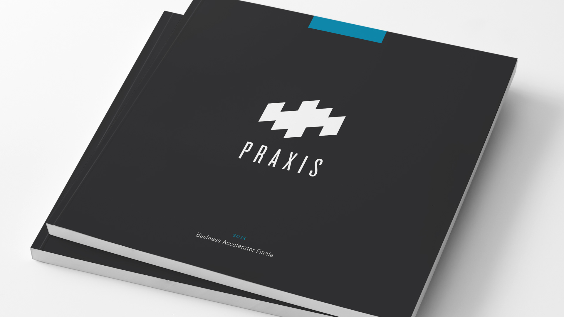 praxis-business-cover.jpg