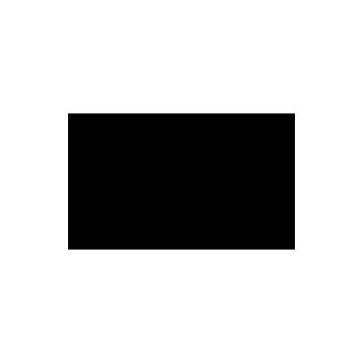 logo-nesc.png