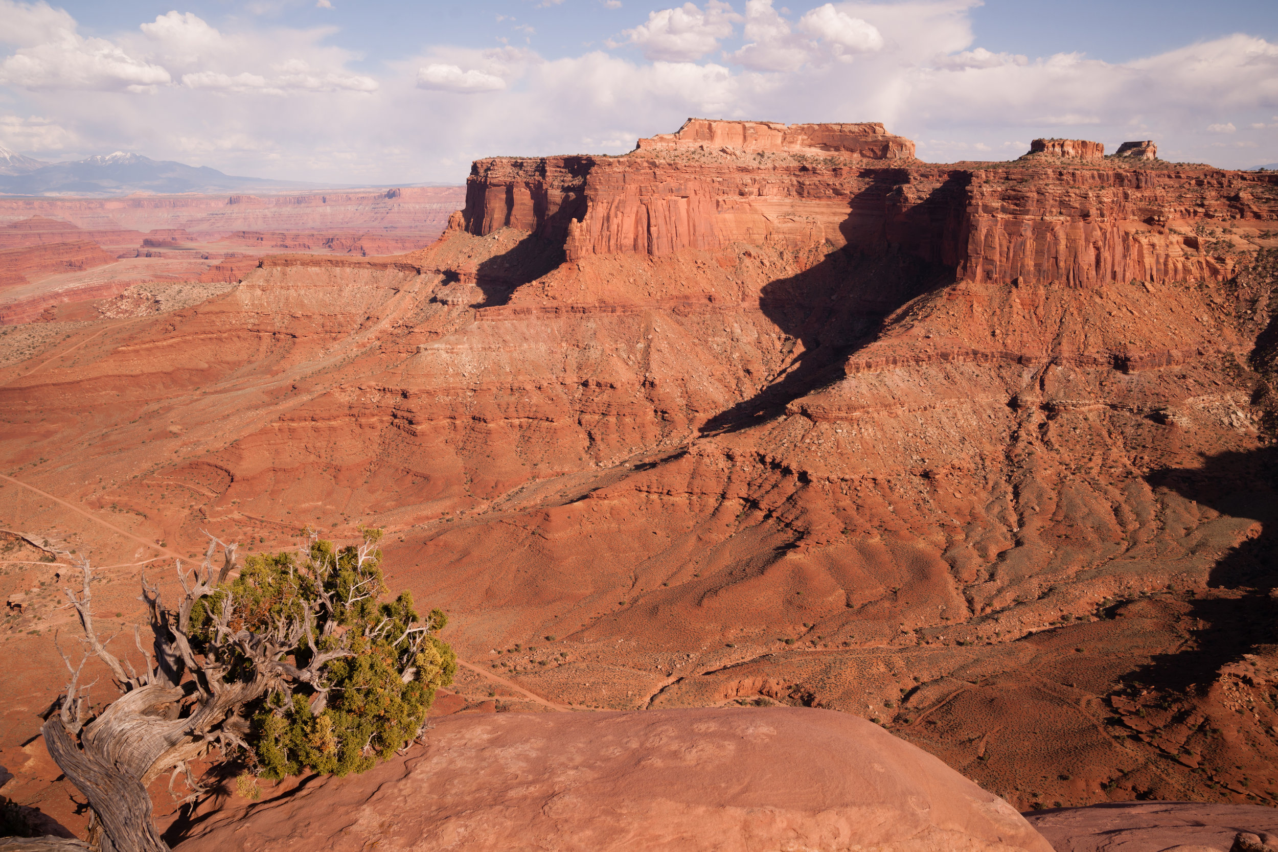 canyonlands-national-park-southeastern-utah-red-PTZ8PBF.jpg