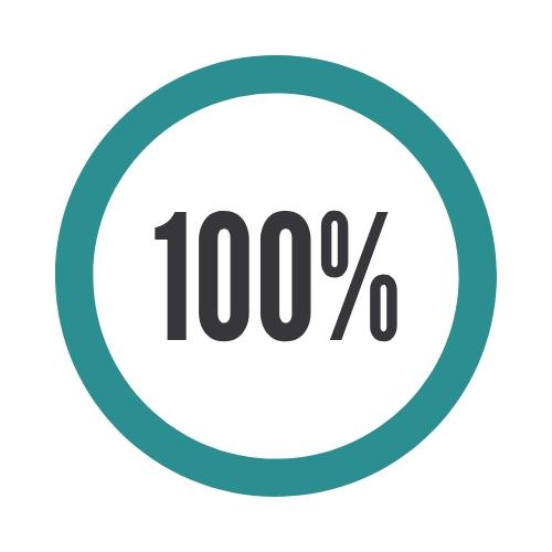 100% Audit Rate