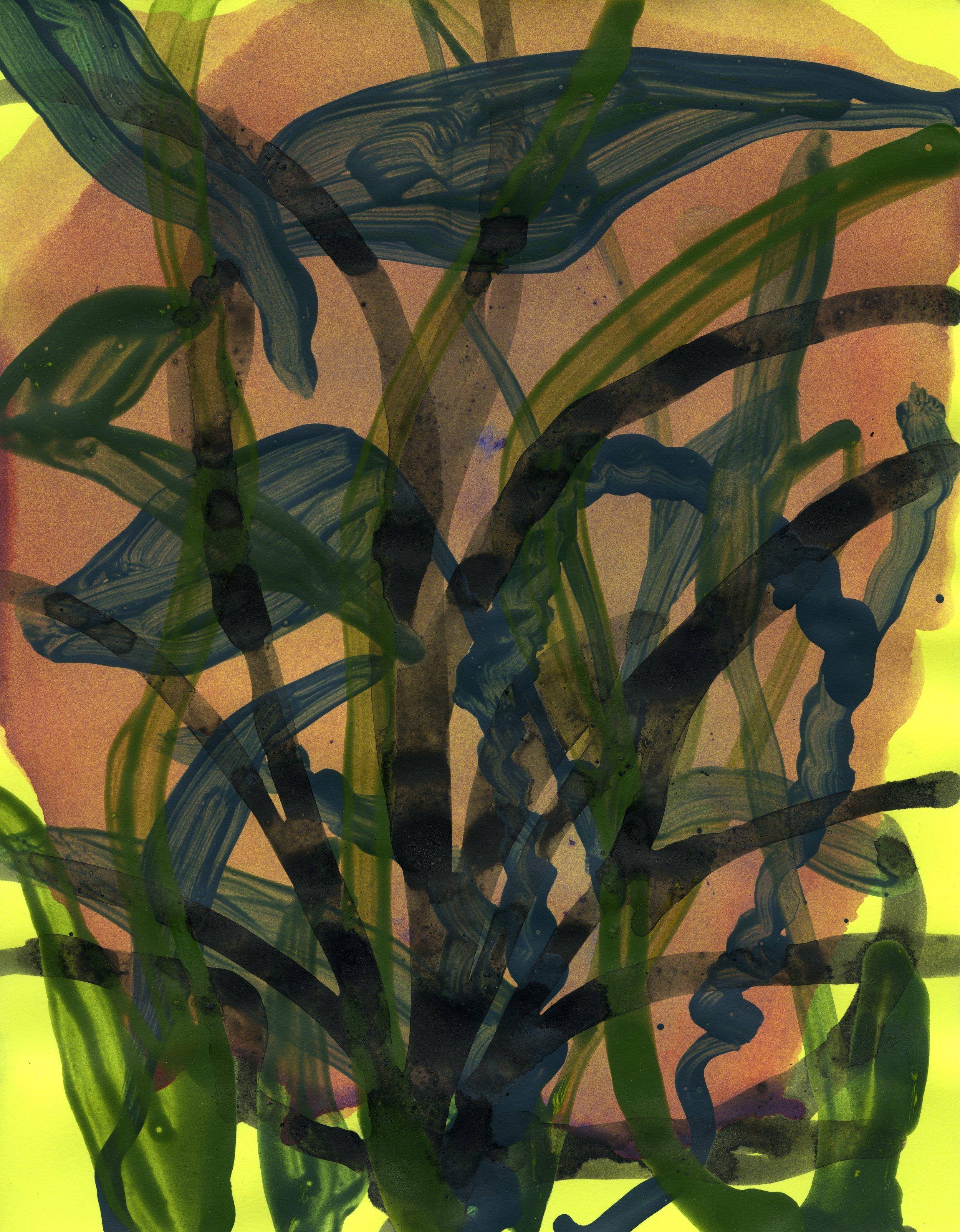 Hybrid grass