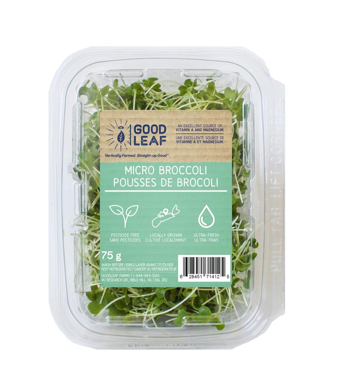 Copy of Micro Broccoli