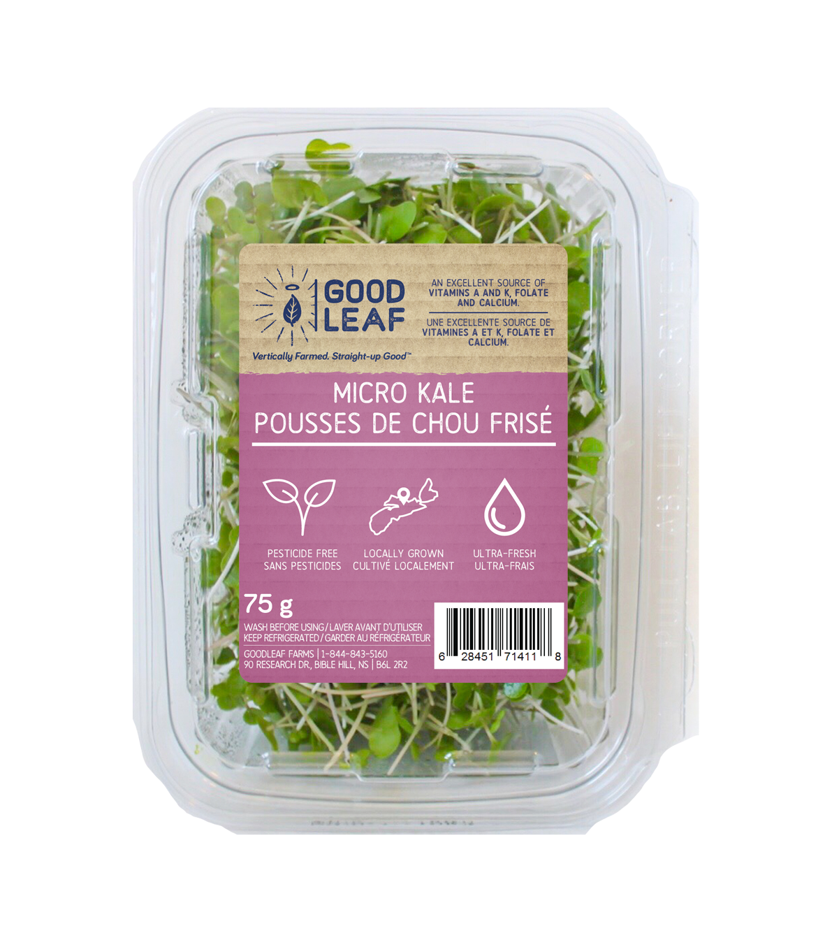 Copy of Micro Kale