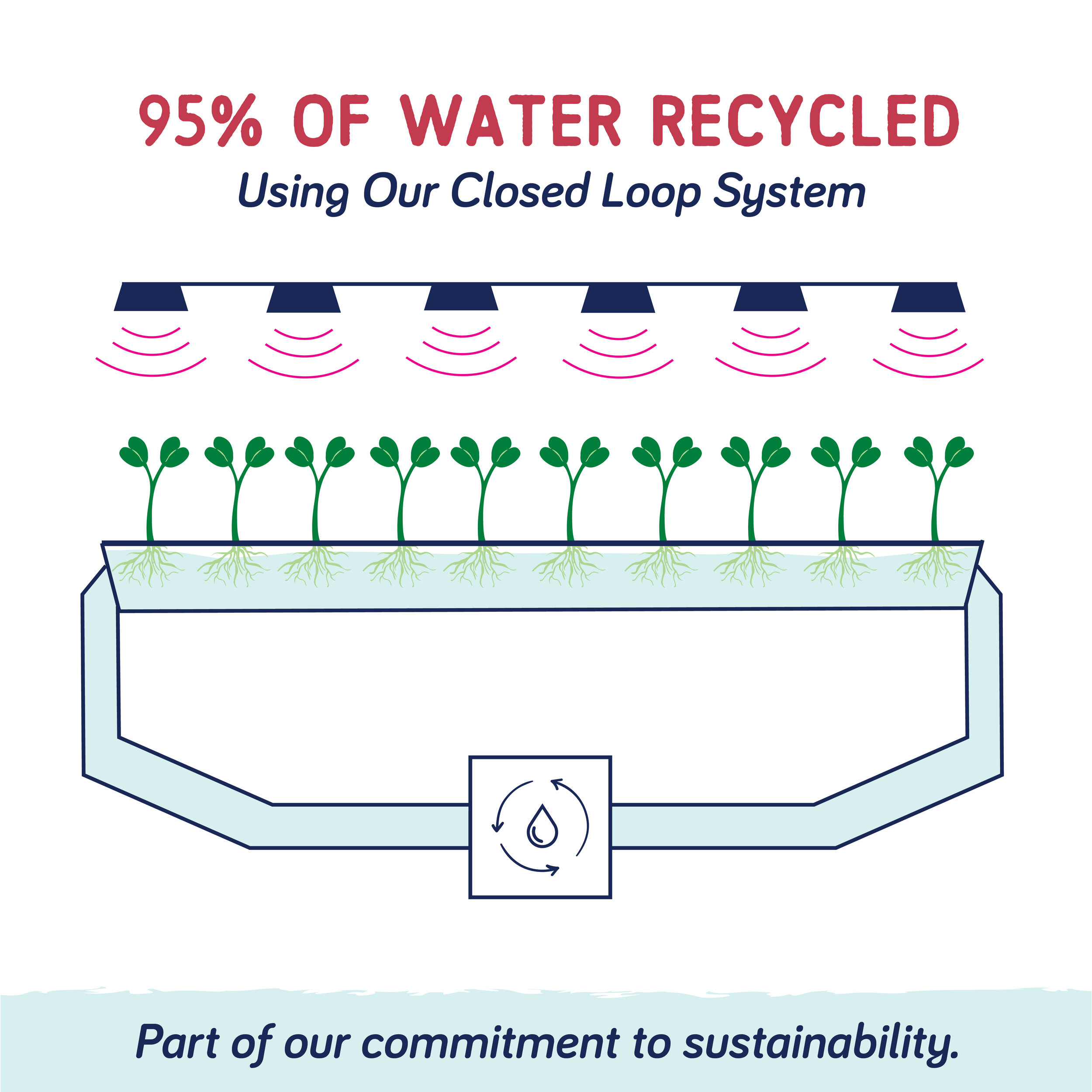 Sustainability - Water Conservation.jpg