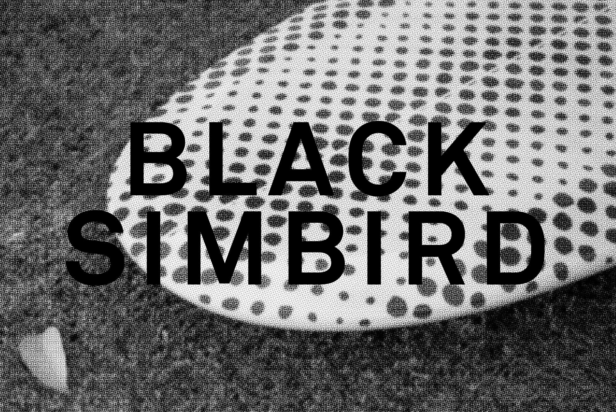 BlackSimbird.png