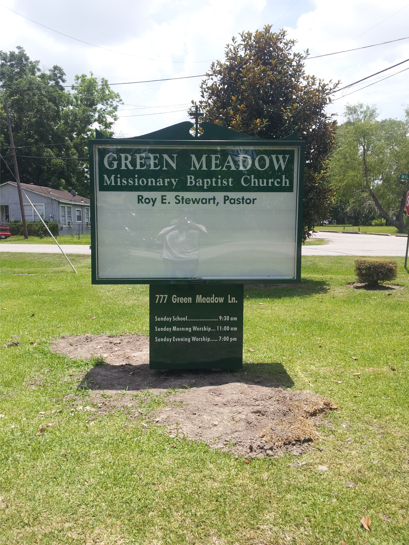 Green Meadow 1.png