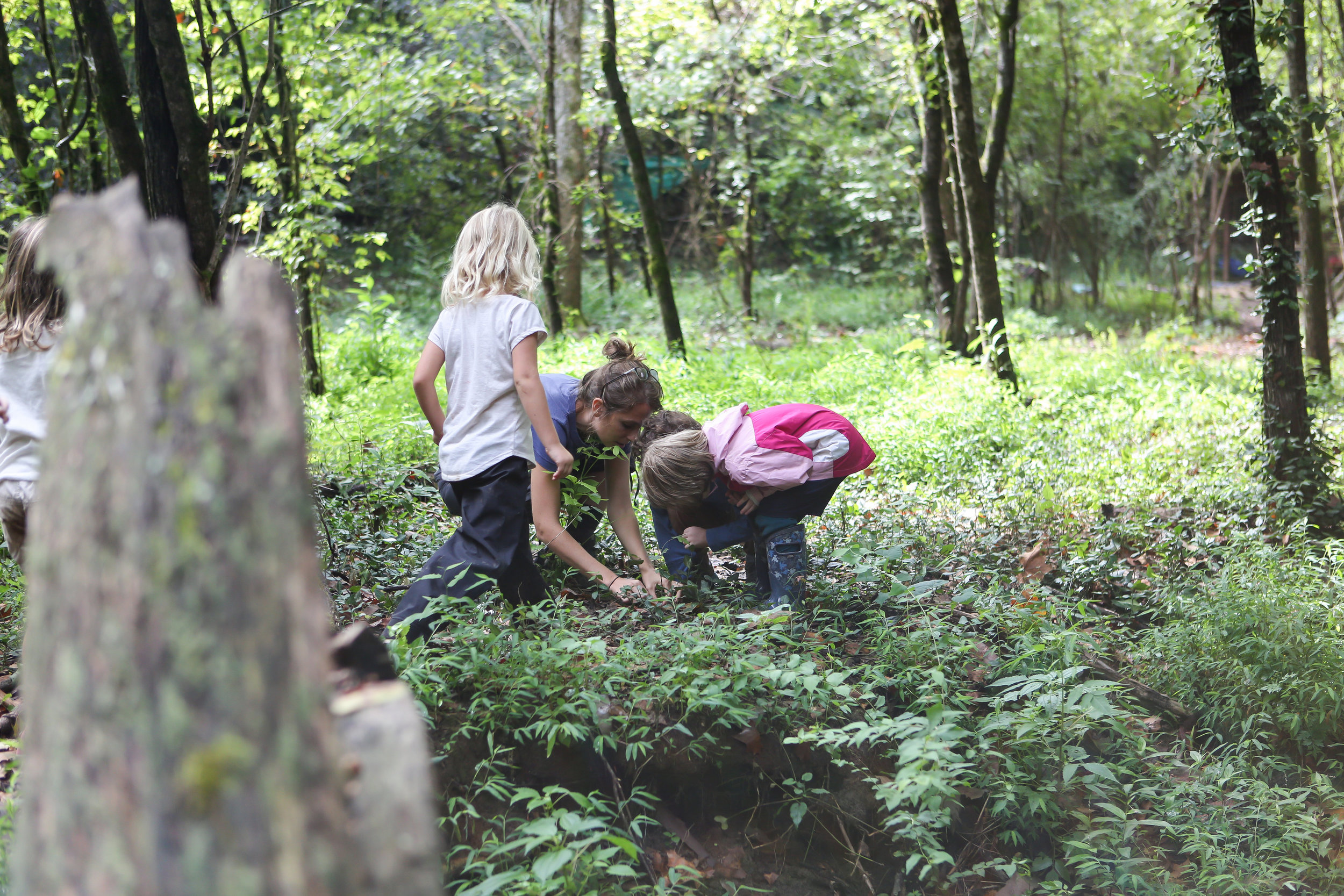 Forest School Finals-Forest School Finals-0090.jpg
