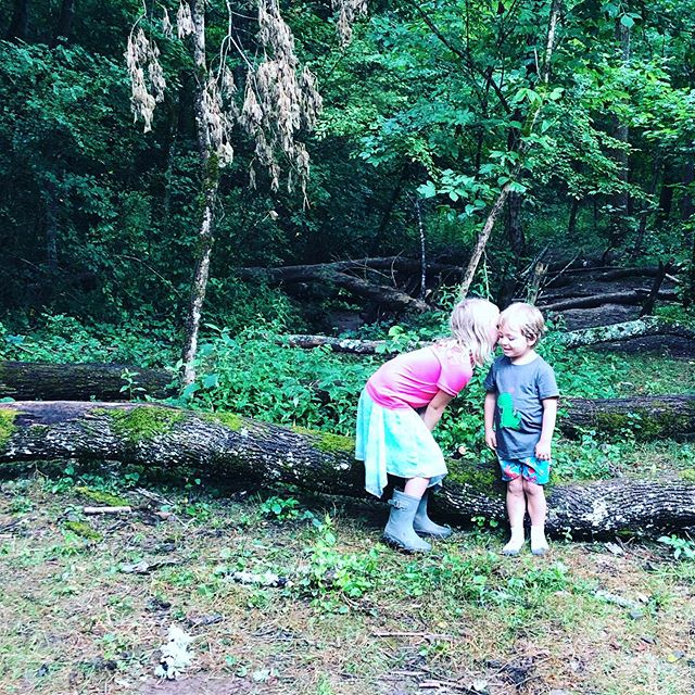 Guess what?! We have a few open spots for Knox Forest School Summer Camp next week. If you have a 3-6 year old that you would like to attend, send a DM for details.  #knoxforestschool