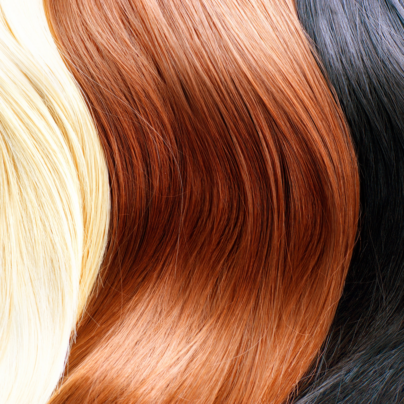 bigstock-Hair-Colors-Palette-Different-74759887.jpg
