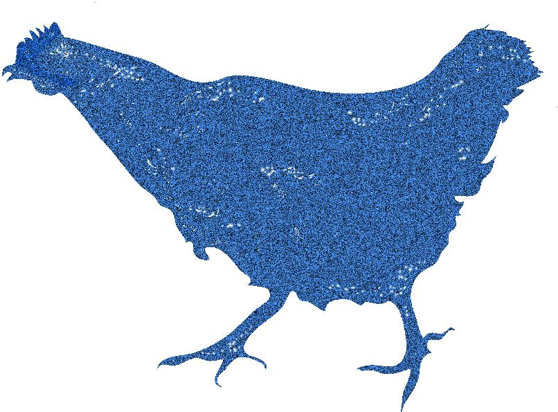 Chicken copy.jpg