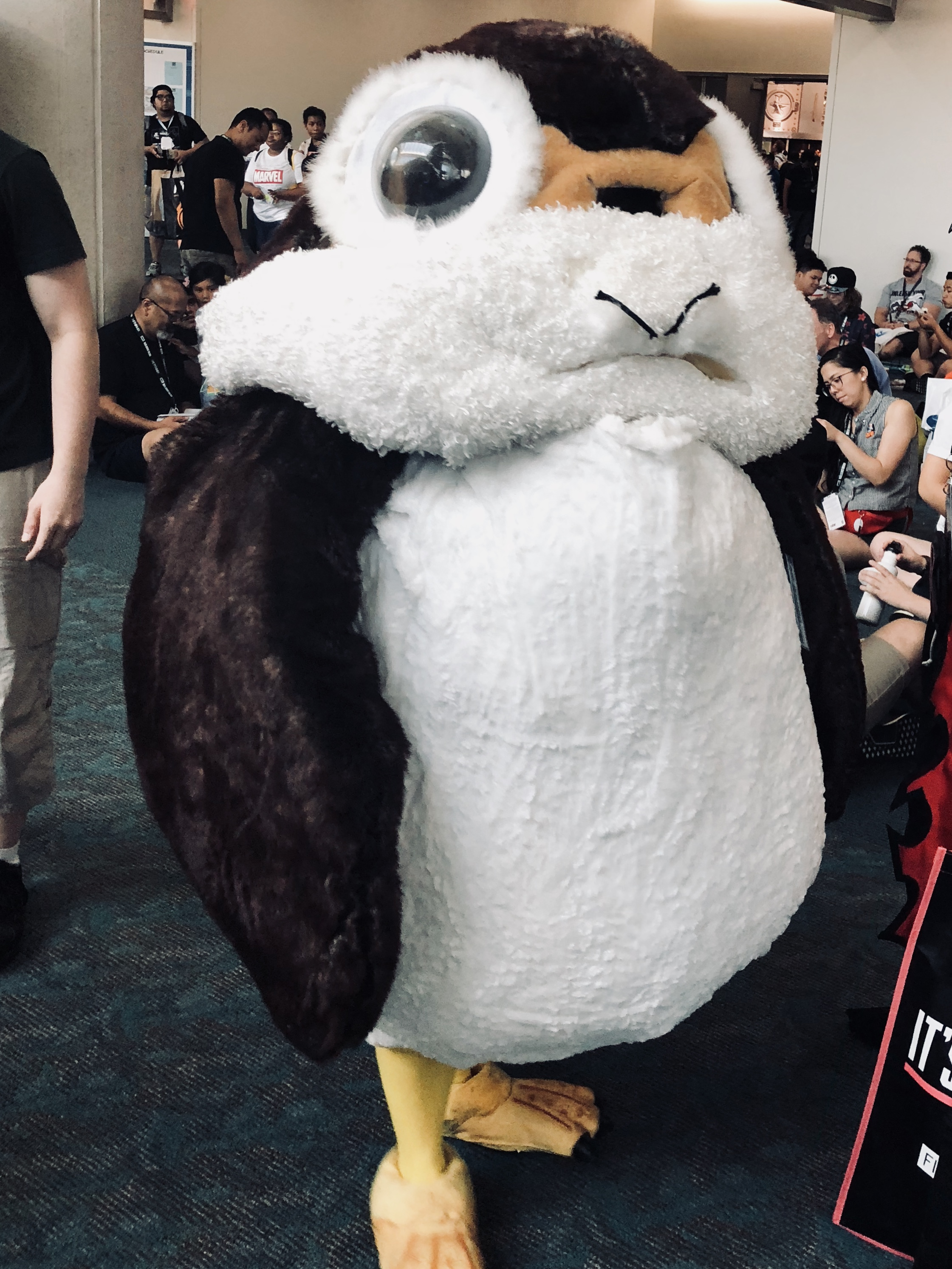 I thought porgs were small and cute…