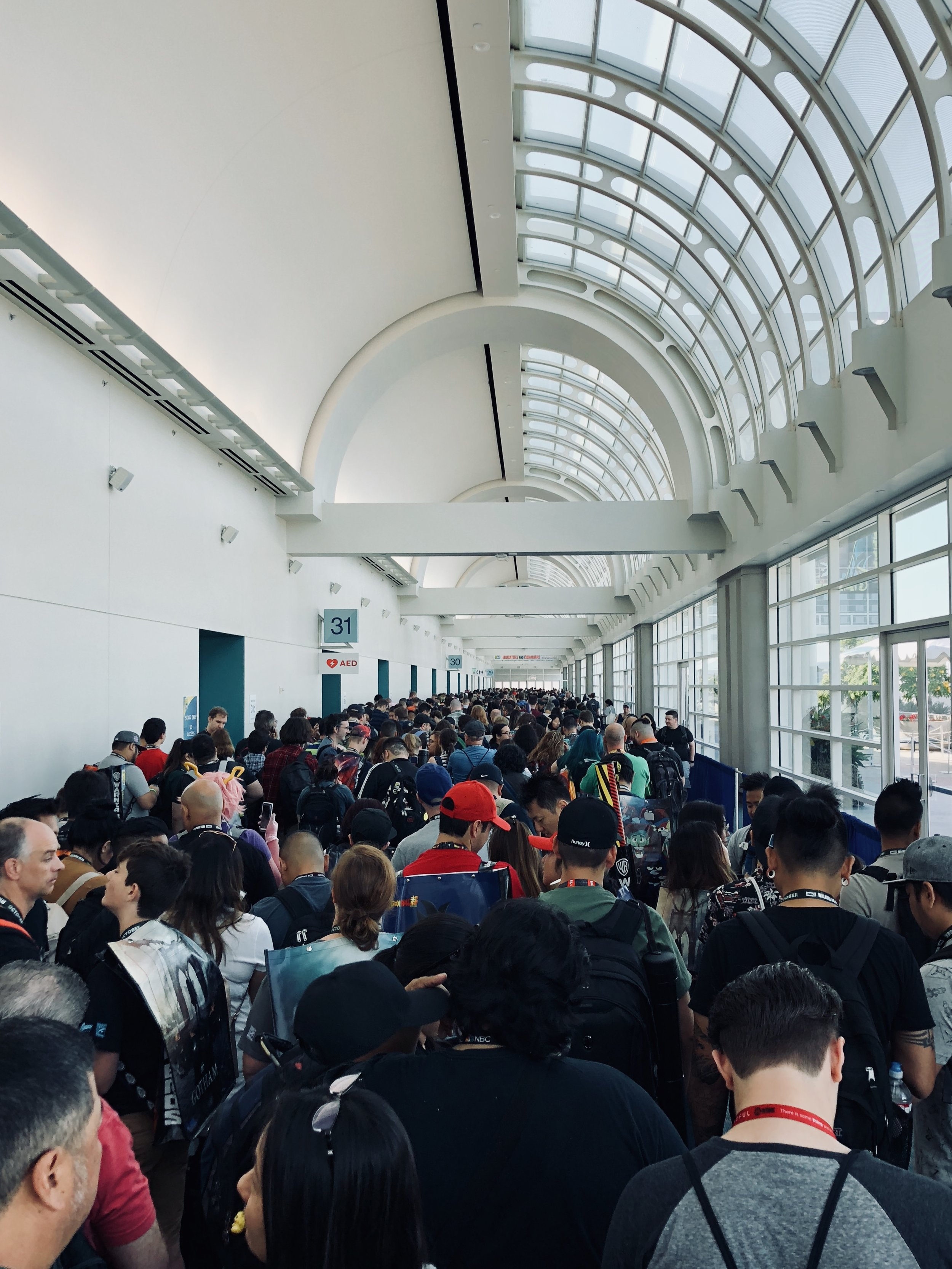 """Waiting in lines is apparently the thing you do most. It's not uncommon to hear someone ask, """"So what are you in line for?"""" This was the line to get into the exhibit hall first thing in the morning."""