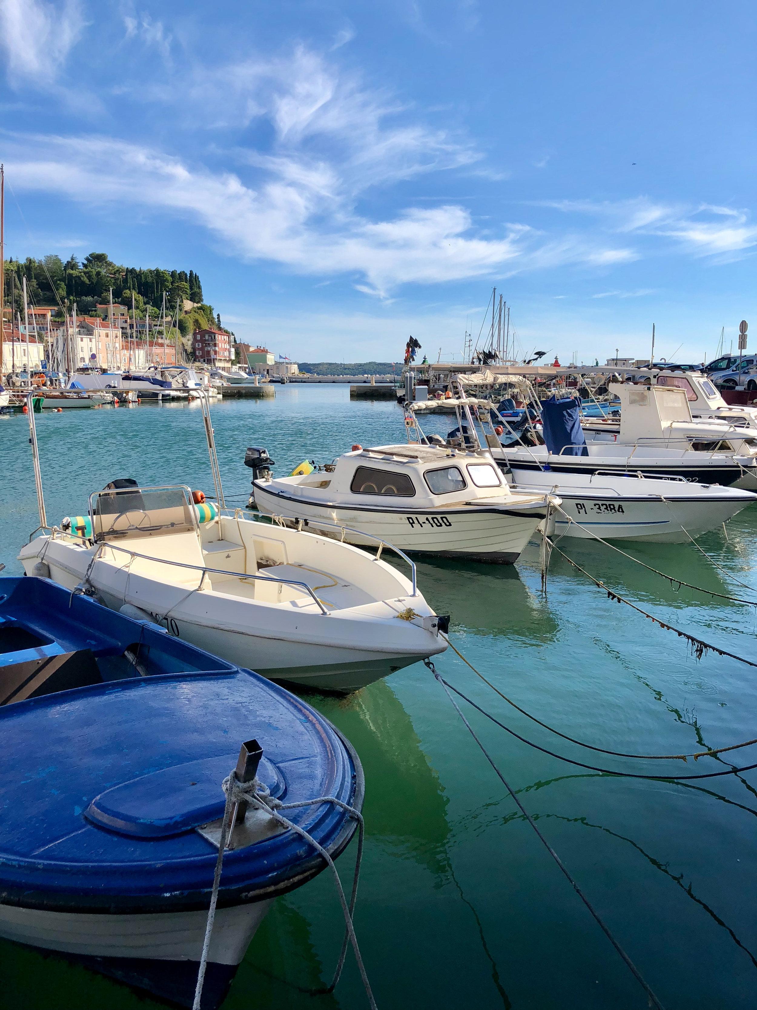 Piran harbor