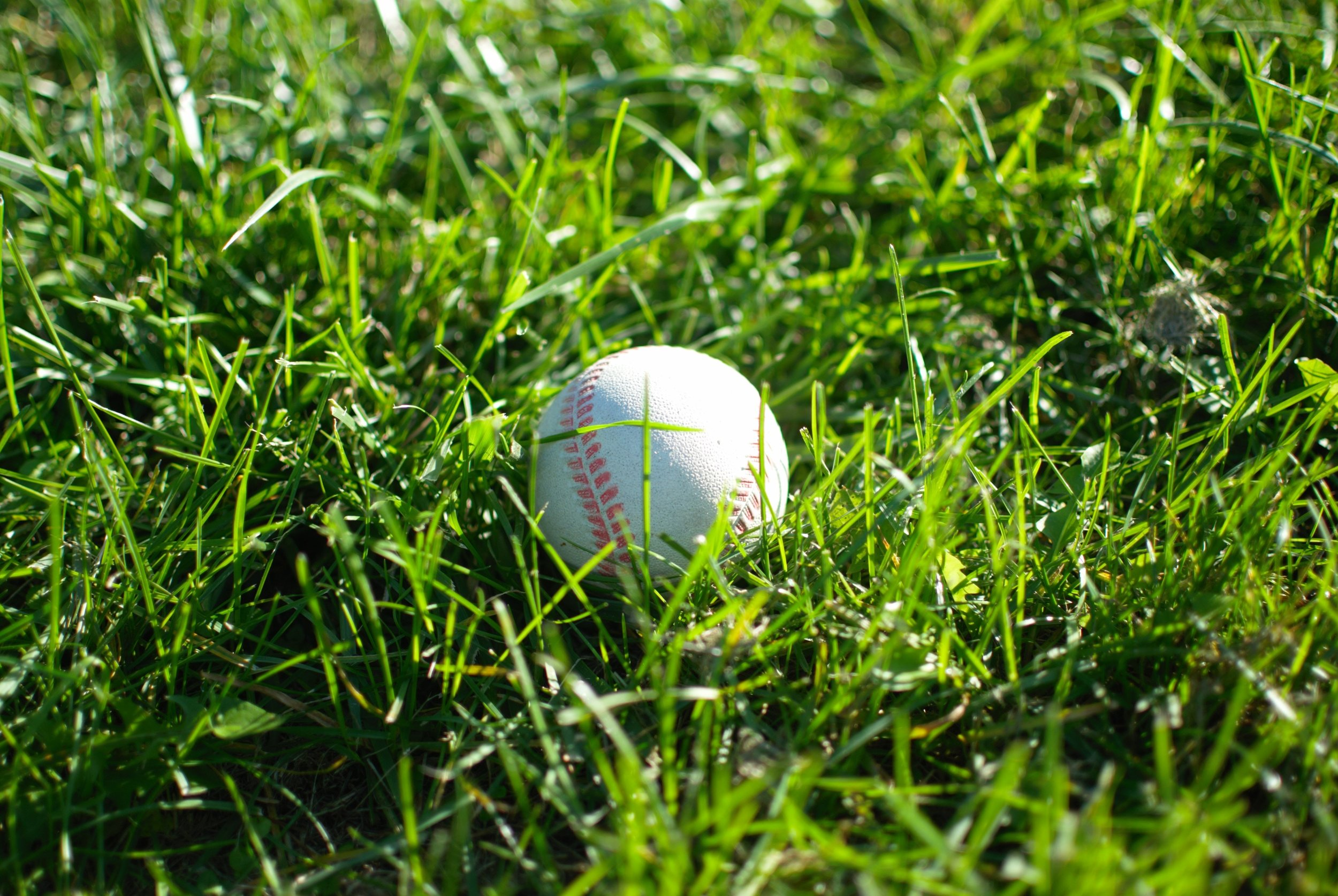 Can We Moneyball Scripture Engagement? - (Blog)
