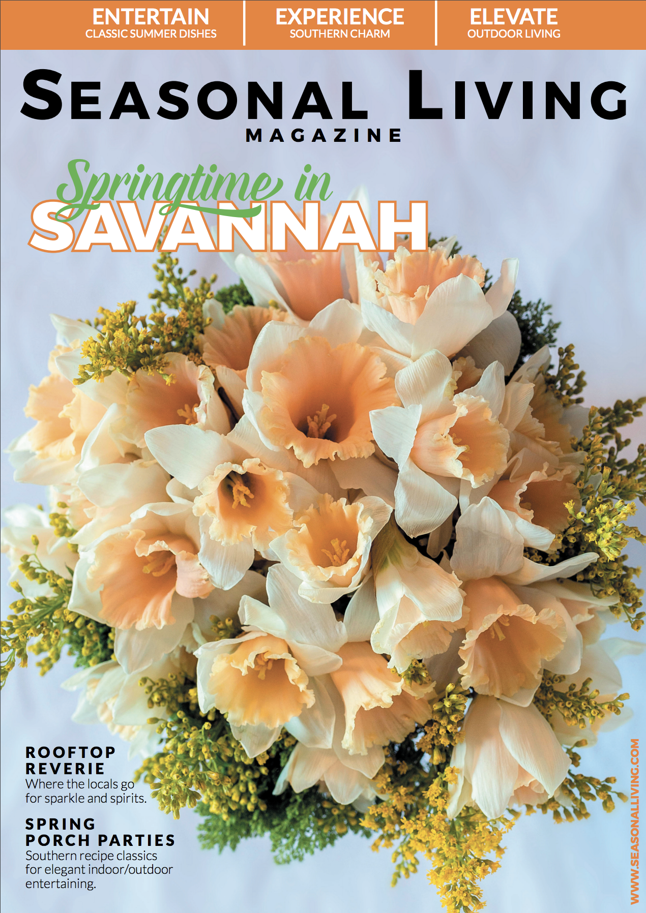 Best Online Design Magazines -- Seasonal Living Magazine