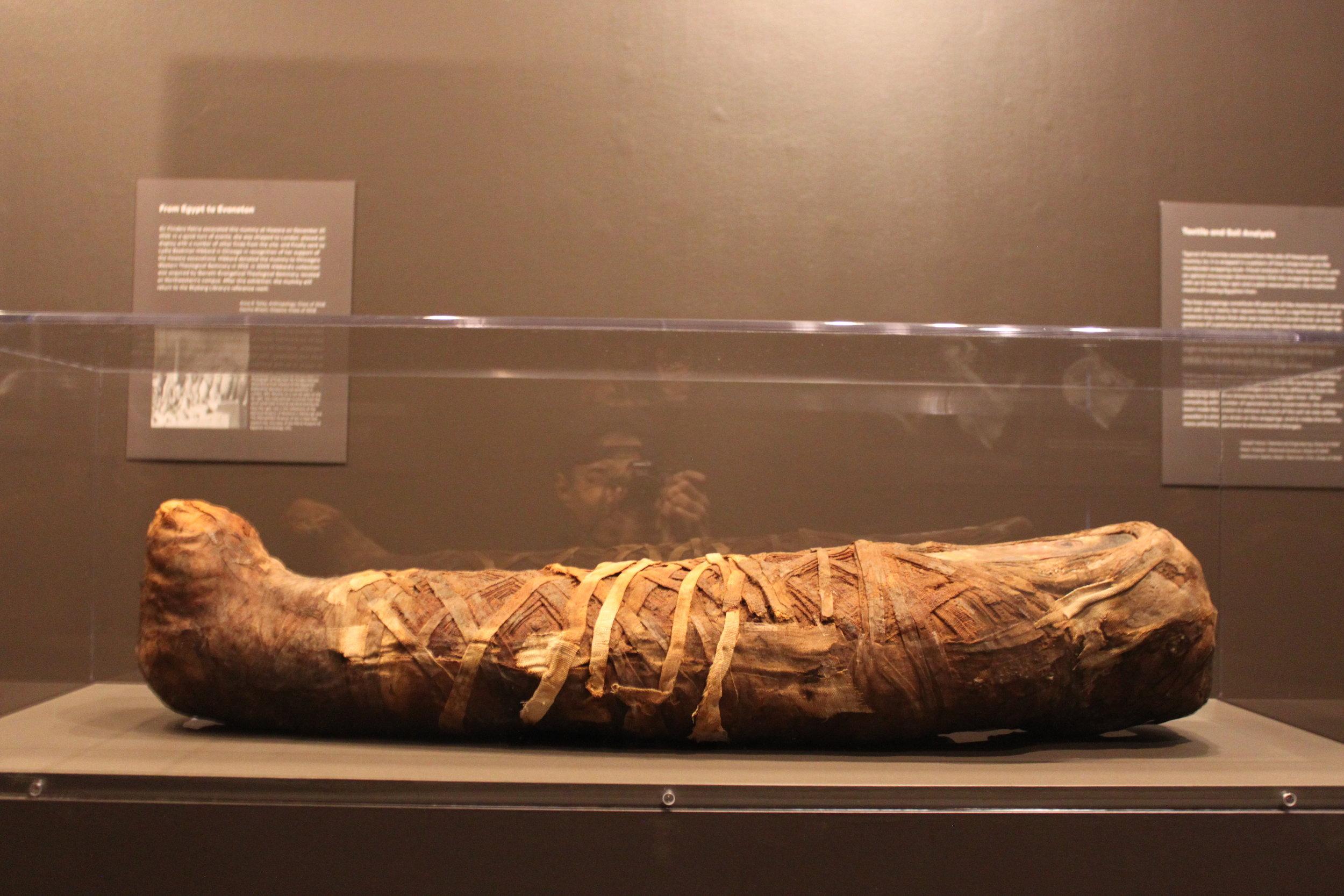 Hawara Portrait Mummy