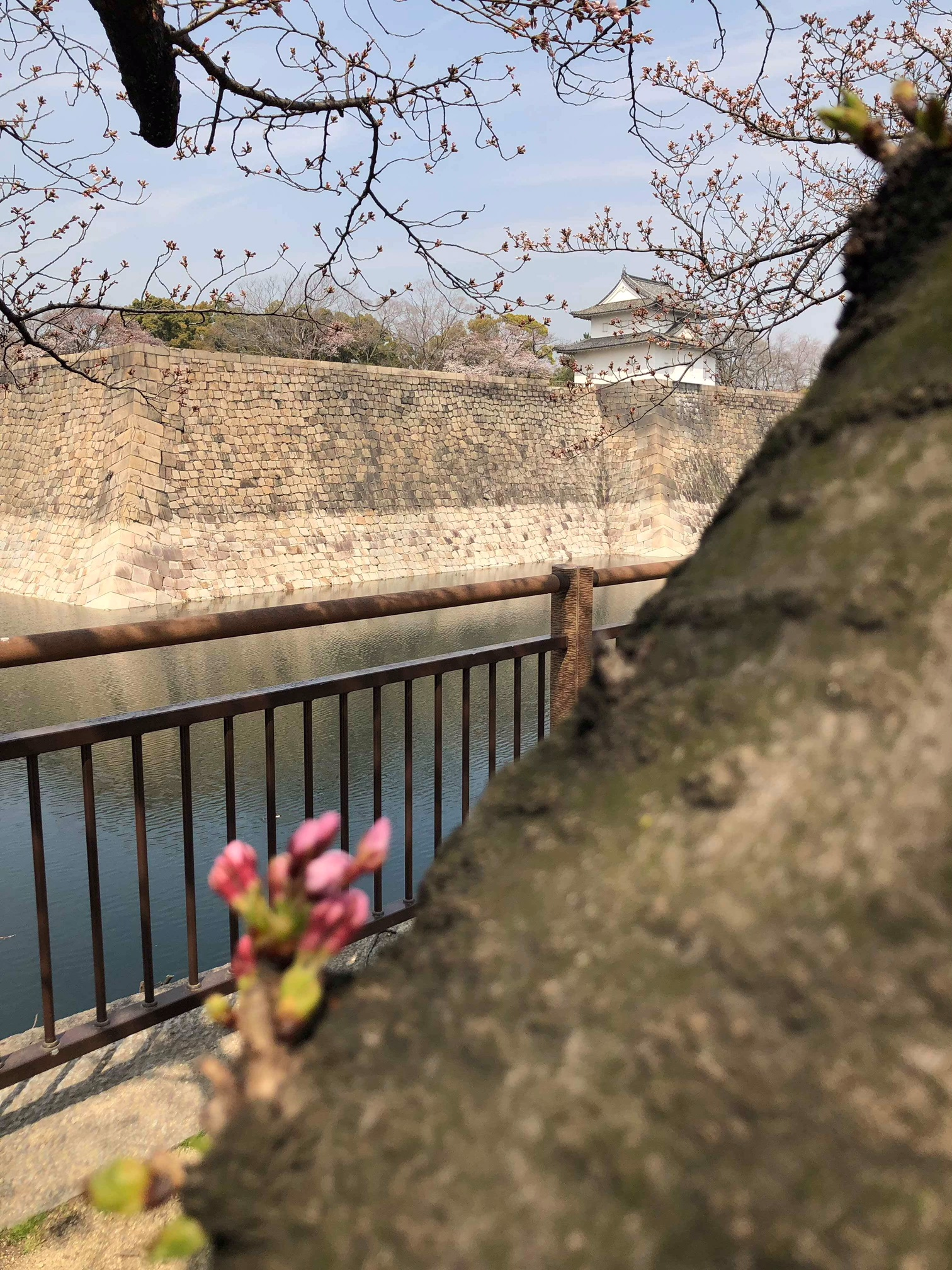 """""""Myfavorite place was the Osaka castle because of its sheer scale and outstanding views."""" - Yao"""