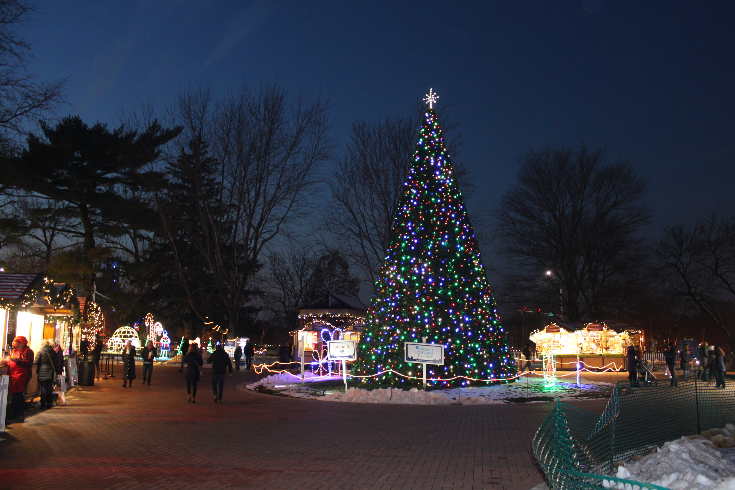 A large Christmas tree greets guests as they arrive.