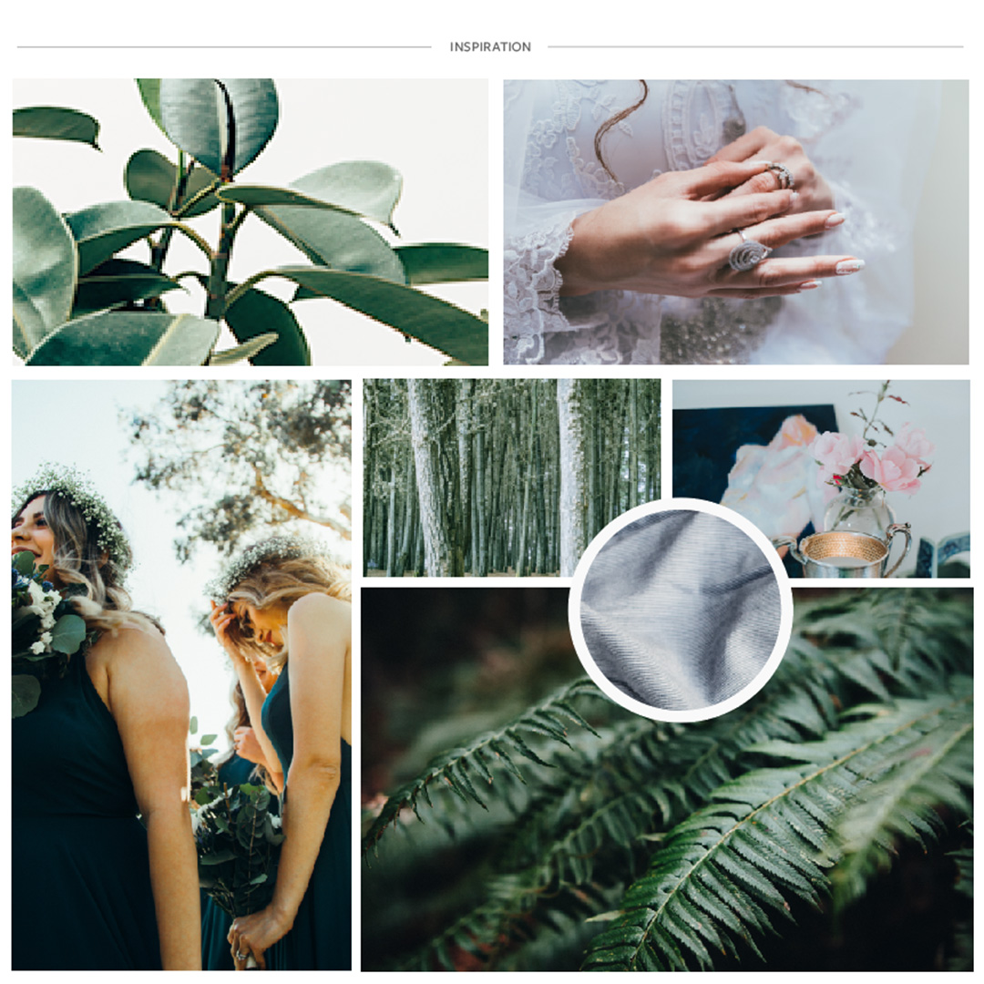 Moodboard Design for Virginia Photographer