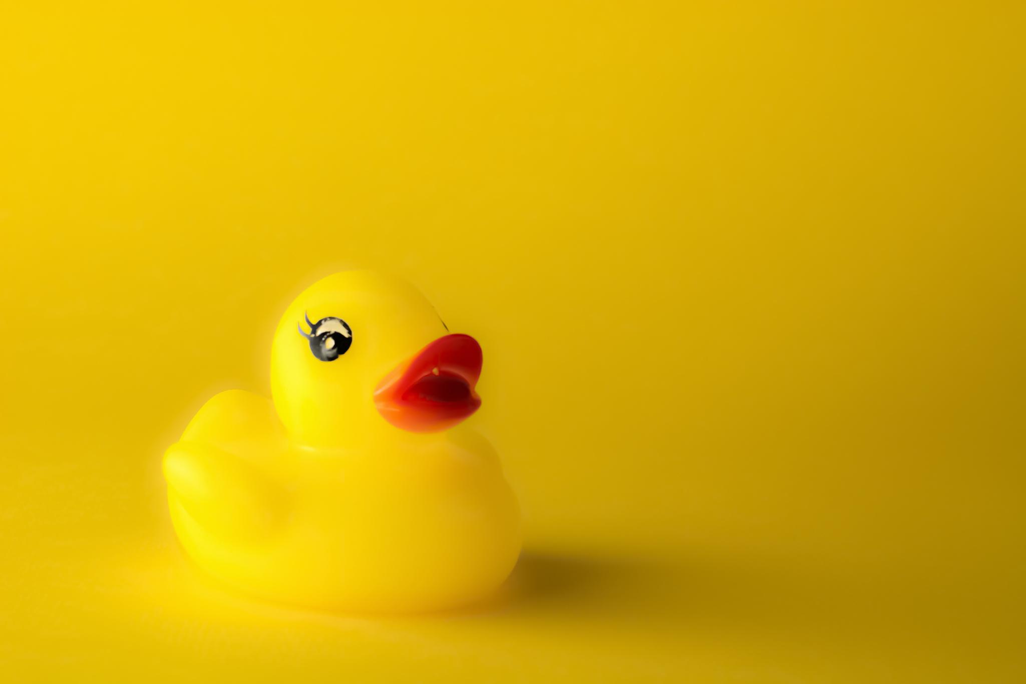 Duck Yellow.jpg