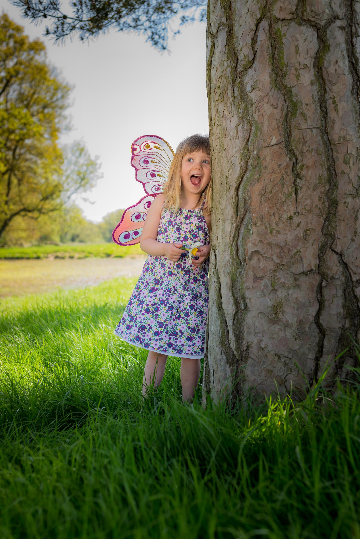 Callie-Tree.jpg