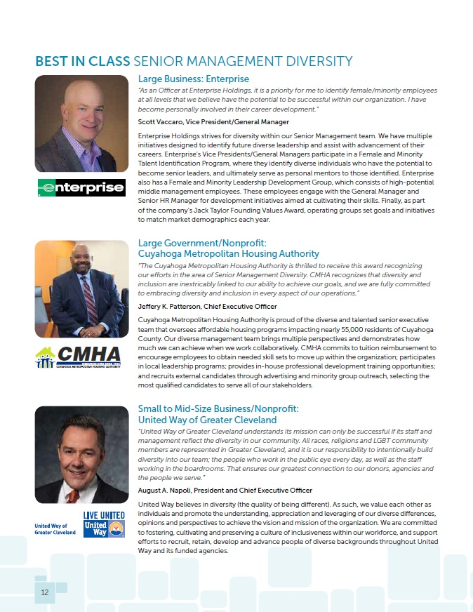 2015: Senior Management - Click below to learn more about the three winners for senior management diversity