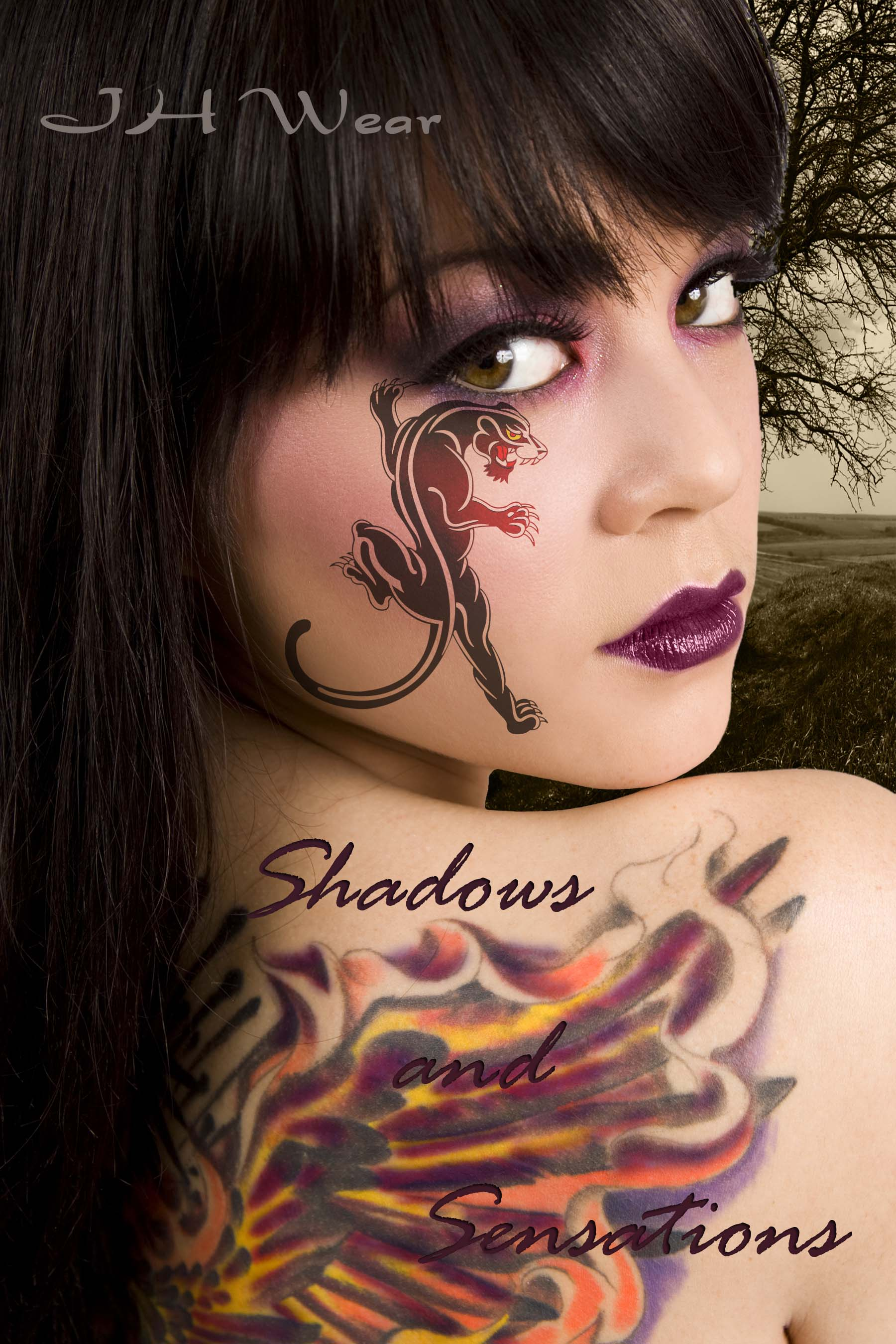 Shadows and Sensations.jpg