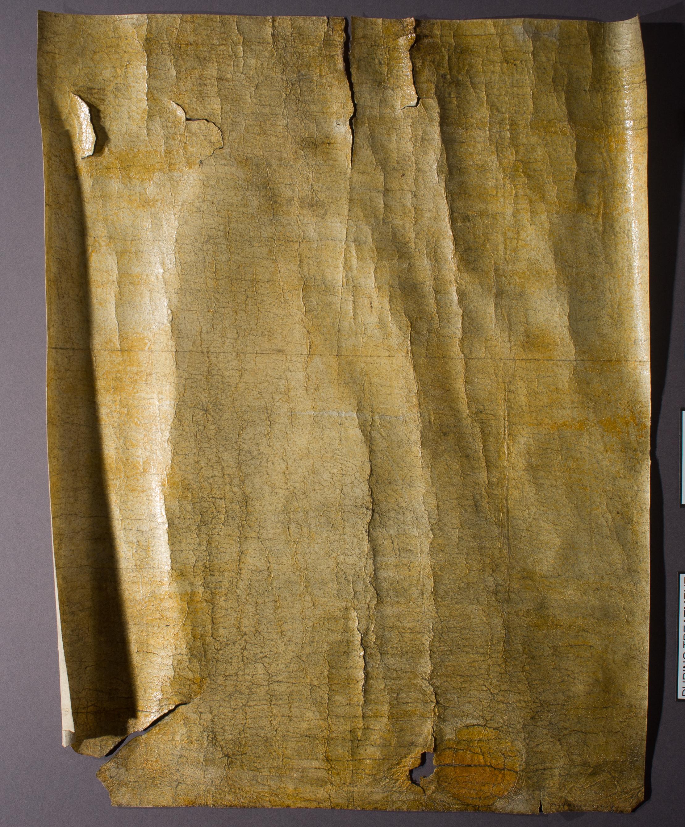 Parchment_Charter-04-Before-RakingLight