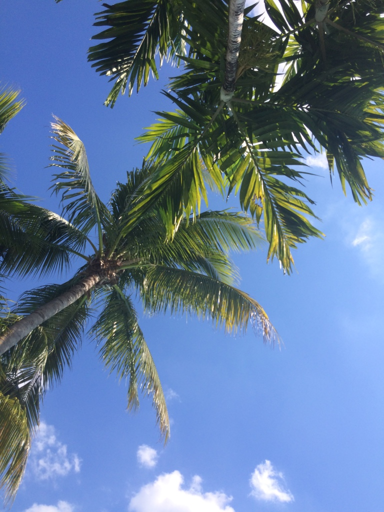 Photo_Miami_Sky.jpg