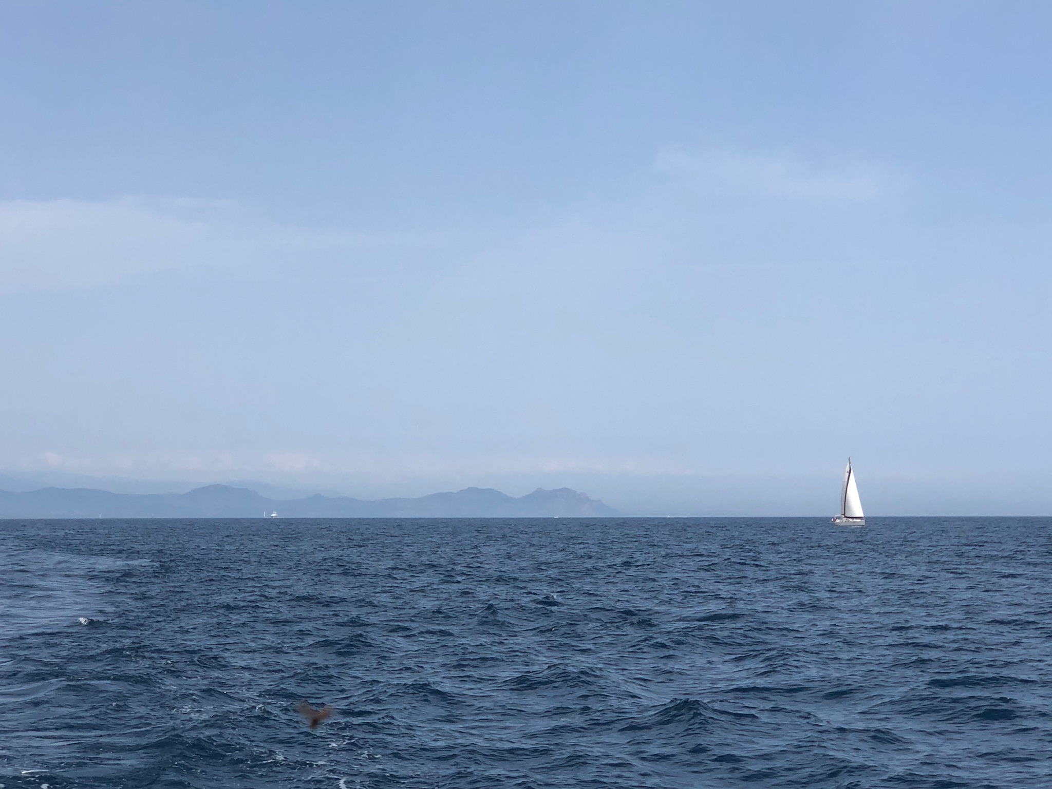 Photo_St.Tropez_SailBoat_View1.jpg