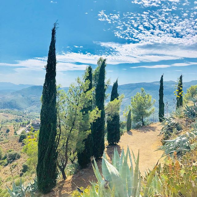 It's called heaven. Look it up. . . . . . #FrenchieTrillion #Priorat #Falset #Gratallops #Wine #Vino #Vi #ViDeVilla #DesNivell #Billo #Travel #JetSet #WineTasting #Catalunya