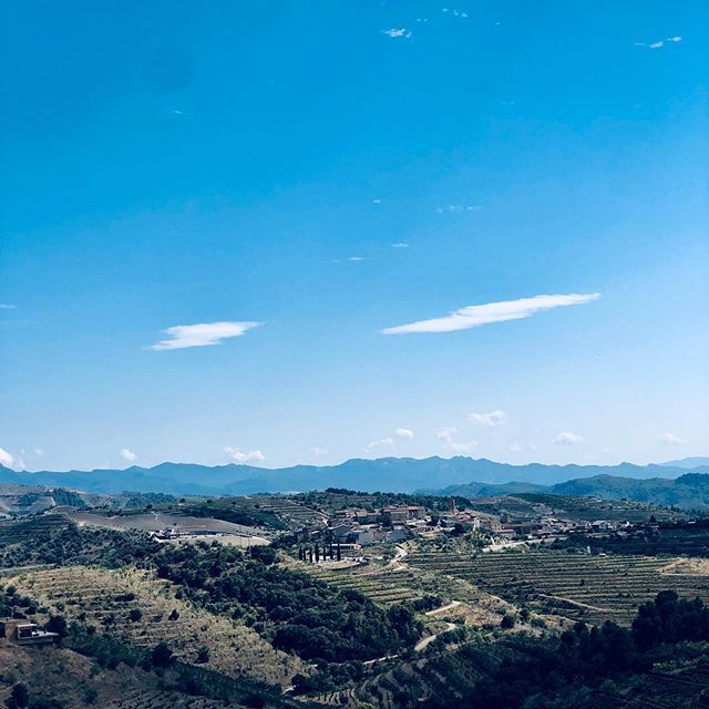 Looks fake. Is real. . . . . . #FrenchieTrillion #NoFilter #Priorat #Catalunya #Falset #Gratallops #DesNivell #ElBillo #CellerCecilio #Travel #JetSet #WineTasting #Vino #ViDeVila #BlaiFerreJust
