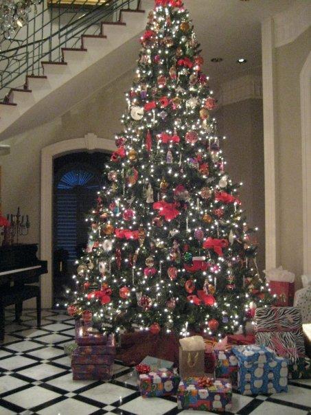 baum Christmas tree.jpg